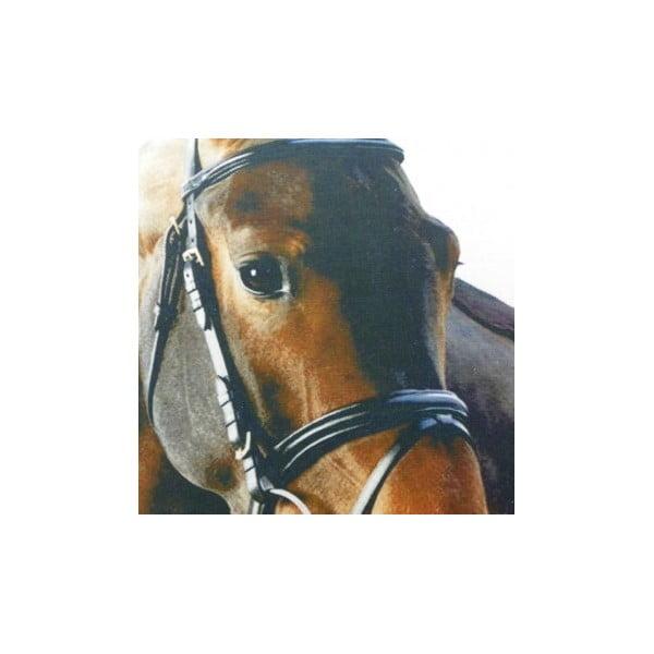Polštář Mars&More Horse, 50x50 cm