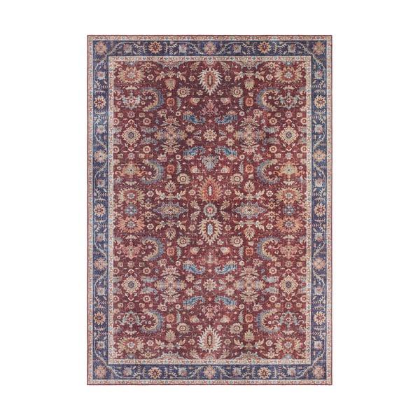 Ciemnoczerwony dywan Nouristan Vivana, 80x150 cm