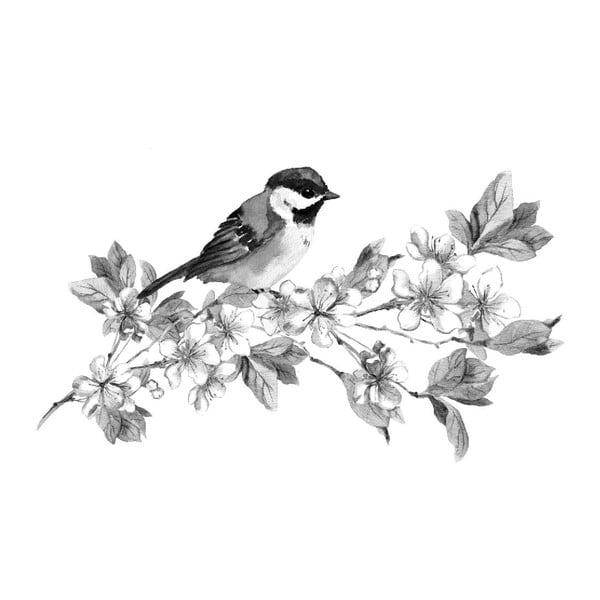 Obraz Black&White Birdie,45x70cm