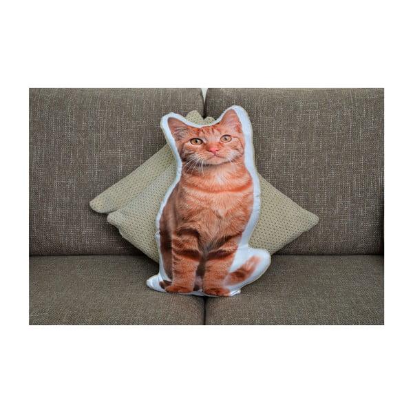 Polštářek Adorable Cushions Zrzounek