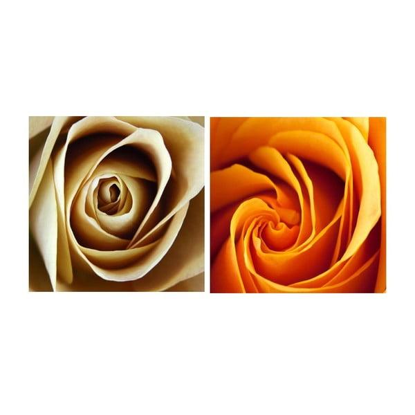 Set obrazů na skle Květ růží, 20x20 cm, 2 ks