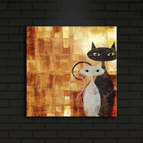 Podsvícený obraz Harry, 40x40cm
