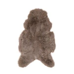 Ovčí kožešina s krátkým chlupem Arctic Fur Taupe, 80 x 60 cm