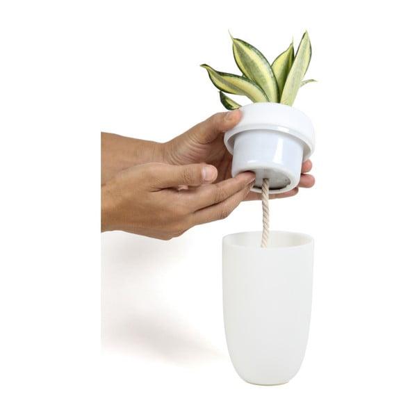 Carepot fehér, falra felfüggeszthető önöntözős virágtartó - Qualy&CO