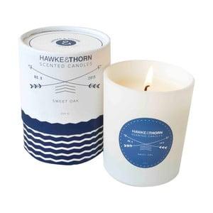 Lumânare parfumată Hawke&Thorn, aromă de stejar dulce
