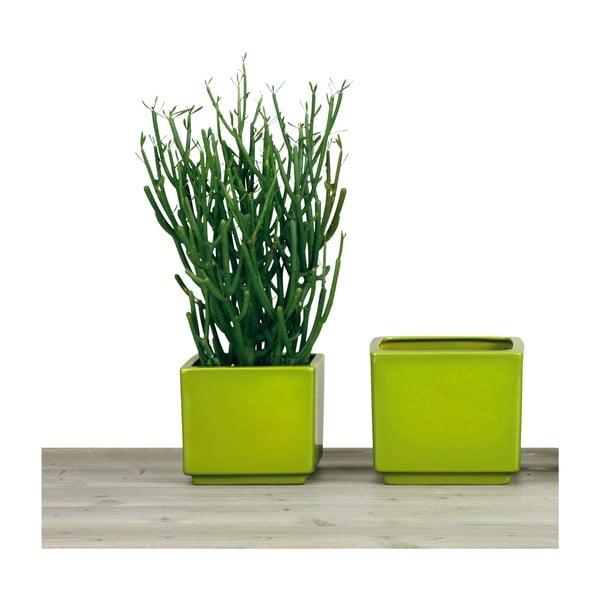 Květináč 14 cm, zelený