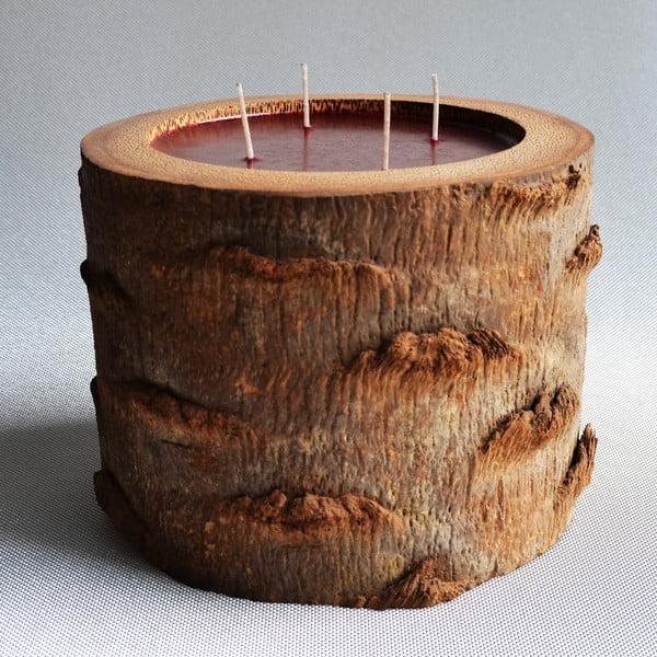 Palmová svíčka Legno s vůní exotického ovoce, 120 hodin hoření