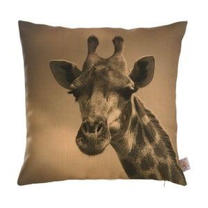 Povlak na polštář Apolena Giraffe
