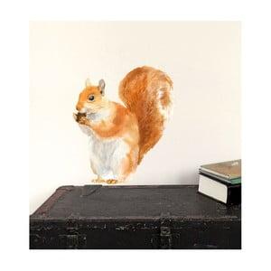Samolepka Red Squirrel