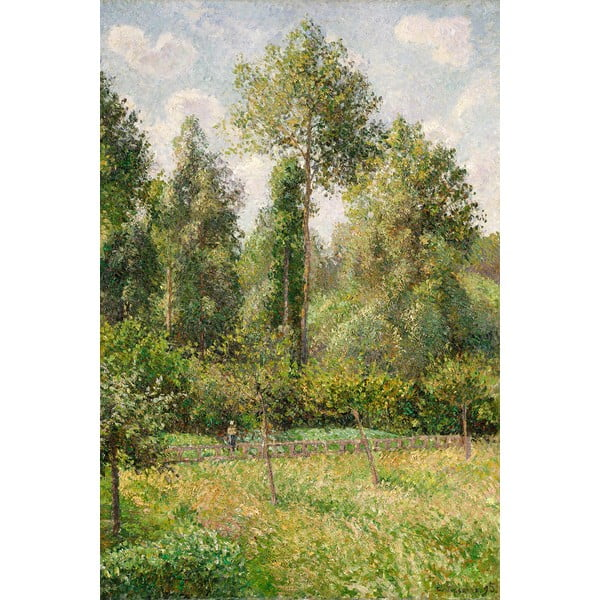 Reprodukcja obrazu Camille Pissarro - Poplars Éragny, 60x80 cm