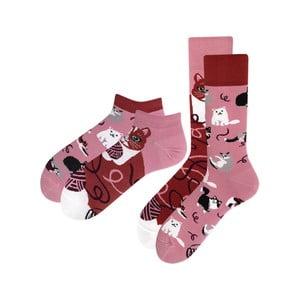 Sada 2 párů klasických a kotníkových ponožek Many Mornings Playful Cat, vel.39-42