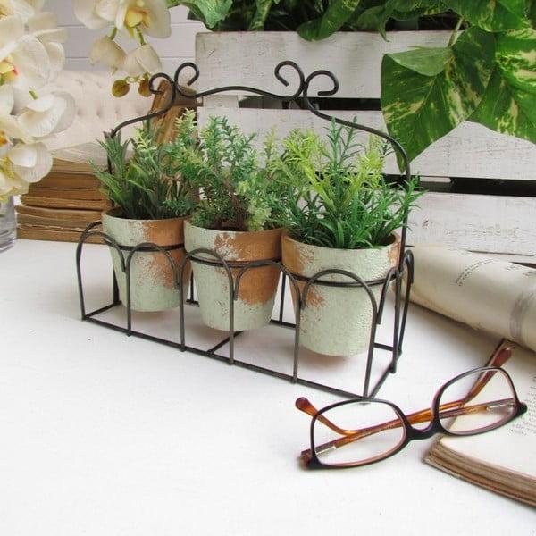Sada 3 květináčů a podnosu Aromatique Herbs