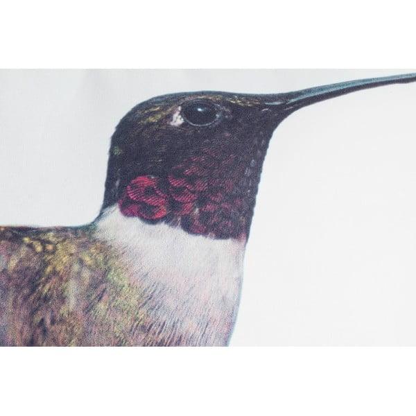 Polštář Fisura Hummingbird, 40x60 cm
