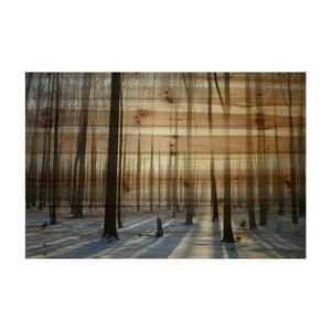 Obraz na dřevě Marmont Hill Wooden Age, 61 x 41 cm