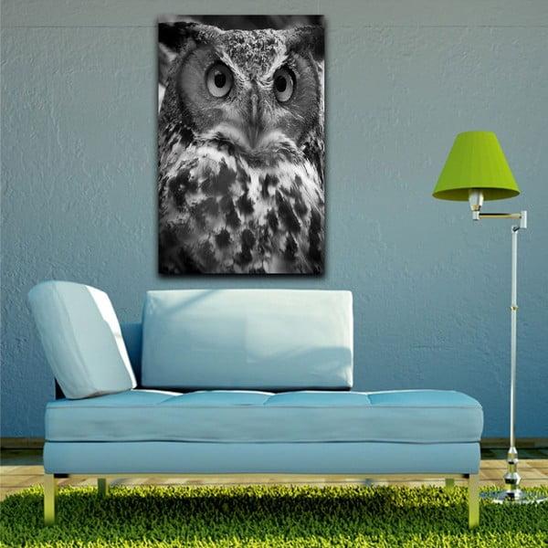 Obraz Black&White Owl,45x70cm