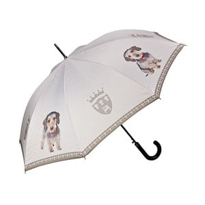 Holový deštník Von Lilienfeld Wire-Haired Dachsfund