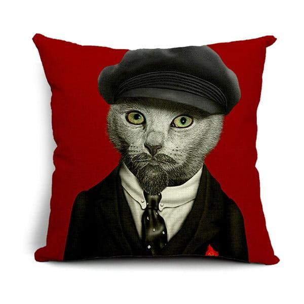 Povlak na polštář Mr. Cat, 45x45 cm