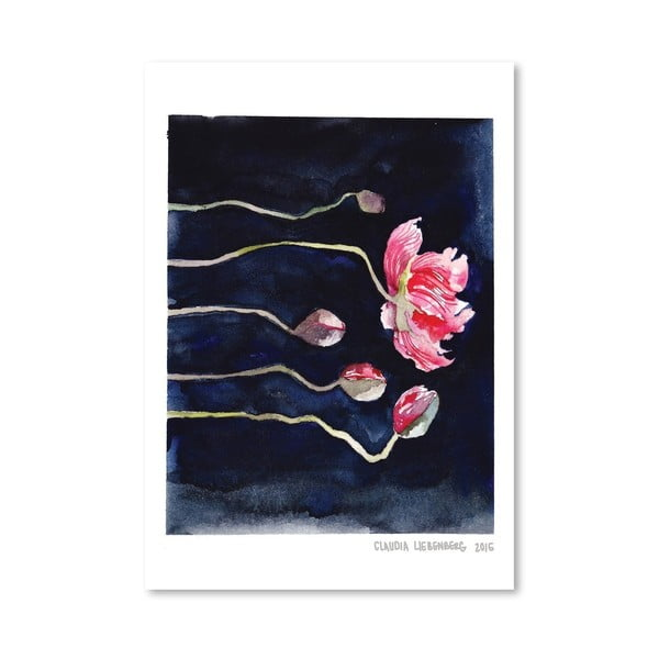 Plagát Blooms on Black III, 30 × 42 cm