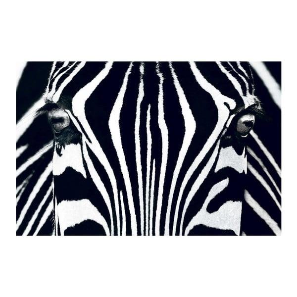 Maxi plakát Black & White, 175x115 cm