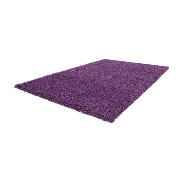 Koberec Oslo Violet, 120x170 cm