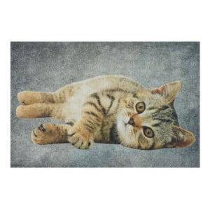 Předložka Grey Tabby 75x50 cm
