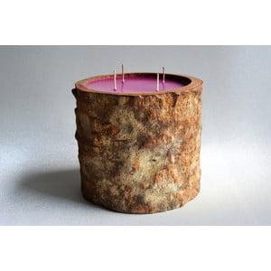 Palmová svíčka Legno s vůní white musk, 200 hodin hoření