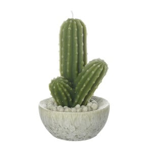 Svíčka Heaven Sends Cactus