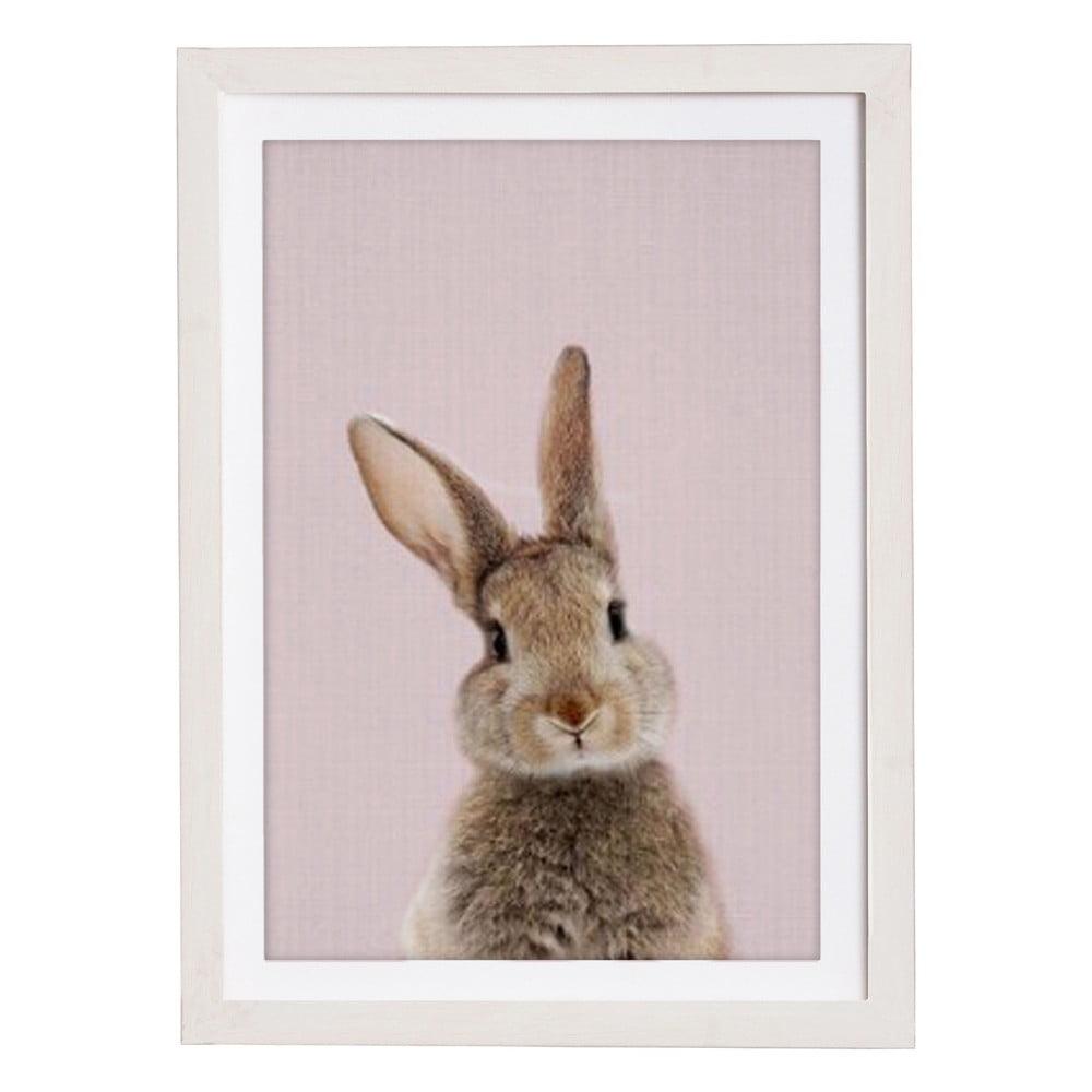 Nástěnný obraz v rámu Querido Bestiario Baby Rabbit, 30 x 40 cm
