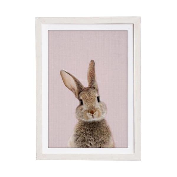 Baby Rabbit keretezett falikép, 30 x 40 cm - Querido Bestiario