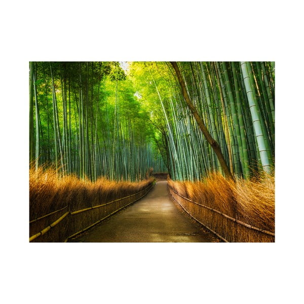 Velkoformátová tapeta Bambus, 315x232 cm