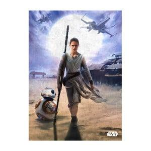 Nástěnná cedule Episode VII - Rey and BB-8