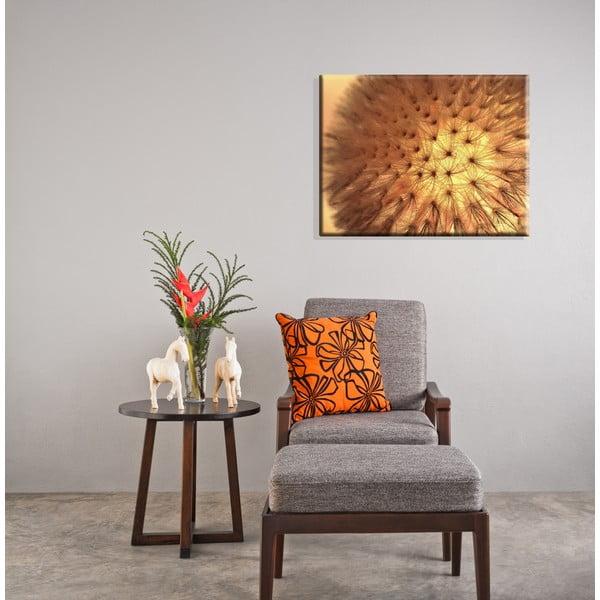 Obraz Dandelion Canvas, 50x65 cm