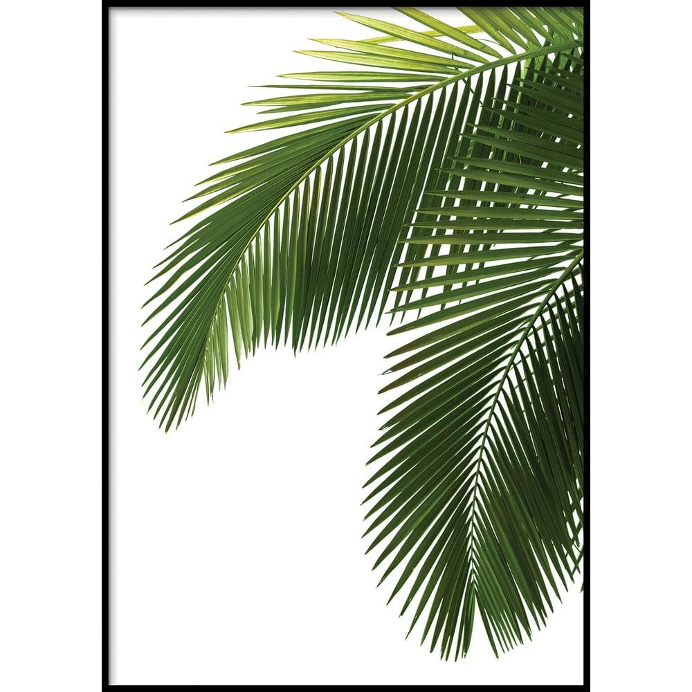 Nástěnný obraz BAHAMAS, 40x50cm