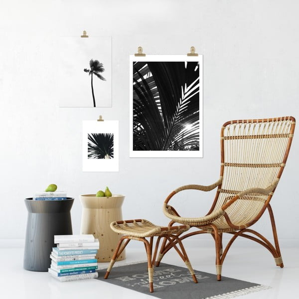 Plakát HF Living Botanic Palms, 30 x 40 cm