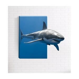 Nástěnný 3D obraz Mosticx Predátor, 40 x 60 cm