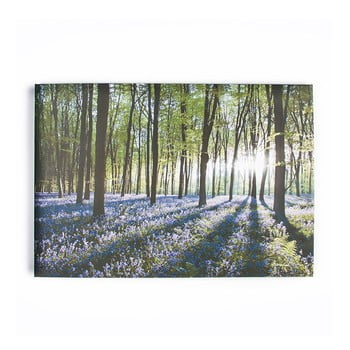 Tablou Graham & Brown Bluebell Landscape, 100 X 70 Cm