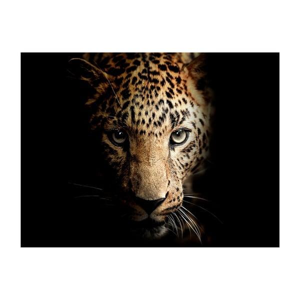 Obraz Styler Leopard, 100x75 cm