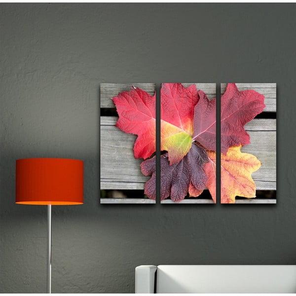 3dílný obraz Listí na dřevě