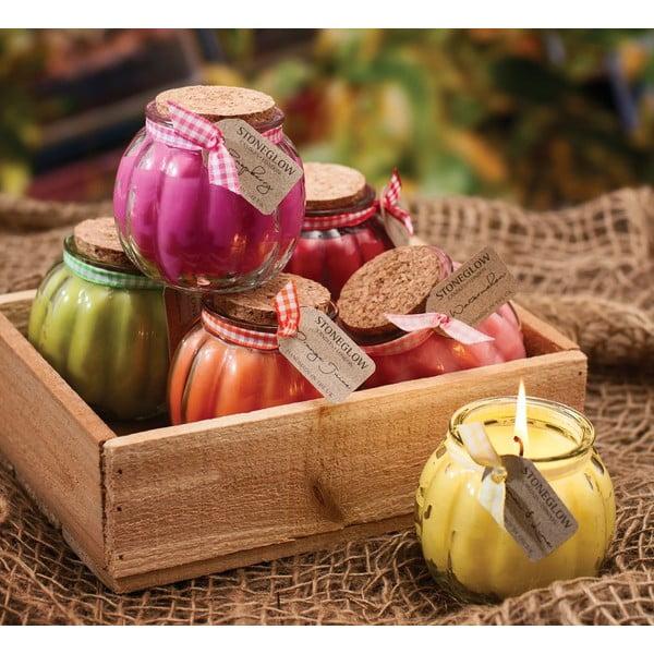 Svíčka Fruit Pots, citrusy