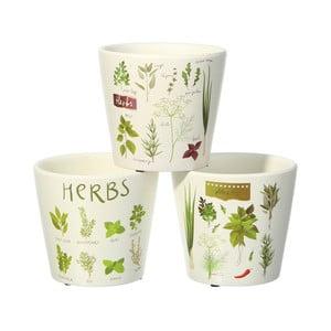 Set 3 ghivece Ixia Herbs