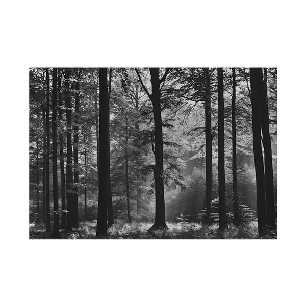 Osmidílná fototapeta Avalon, 366 x 254 cm