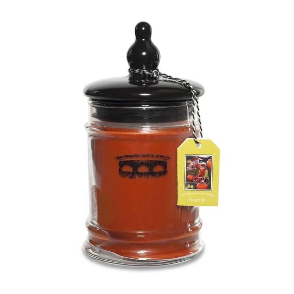 Svíčka s vůní jablka, skořice, hřebíčku a vanilky Bridgewater Candle