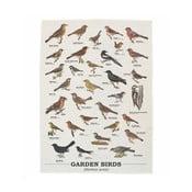 Utěrka z bavlny Gift Republic Garden Birds