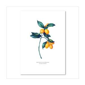 Plakát Leo La Douce Golden Orange, 21x29,7cm