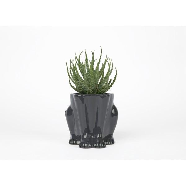 Ghiveci din ceramică DOIY Panther, înălțime 15 cm