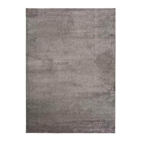 Tmavě šedý koberec Universal Montana, 200 x 290 cm