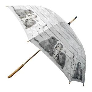 Deštník Scaffold Wood Kittens Grey
