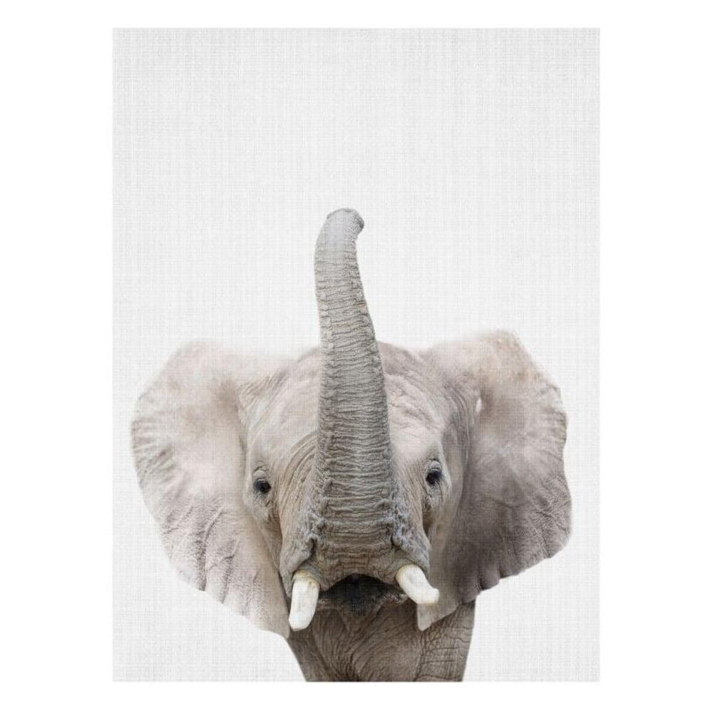 Plakát Blue-Shaker Baby Animals Elephant, 30 x 40 cm