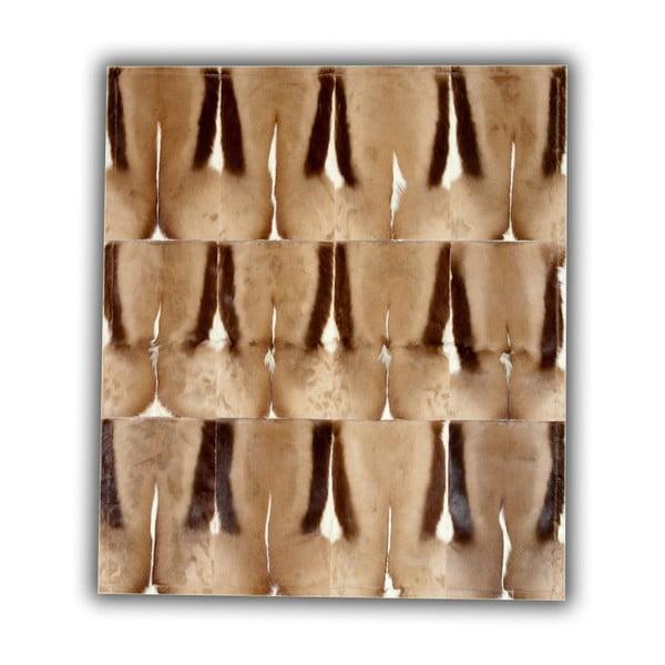 Koberec z antilopí kůže Pipsa Springbok, 120x180 cm