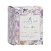 Svíčka s vůní levandule Greenleaf Lavender, doba hoření 15 hodin